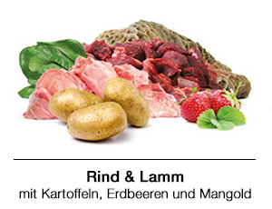 BARF Rezept für Hunde: Rind & Lamm