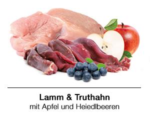 BARF Rezept für Hunde: Lamm und Truthahn