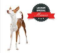 Tackenberg - Barf Menü für dünne Hunde mit Rindereuter [01290] 15 Artikel