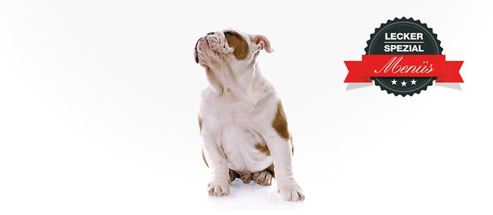 Barf Menü für Hunde - Exoten mit Rehgulasch 30 Artikel