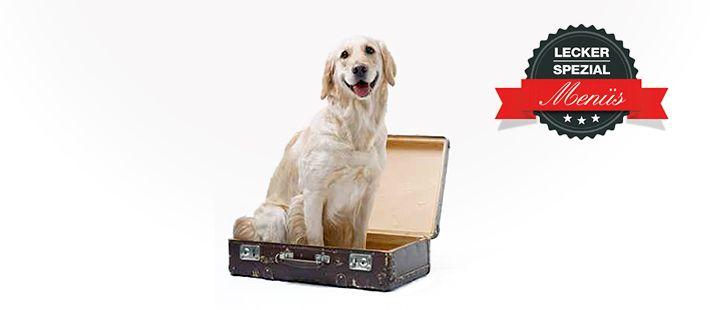 Dosen Menü für Hunde mit Entenfleisch 30 Artikel